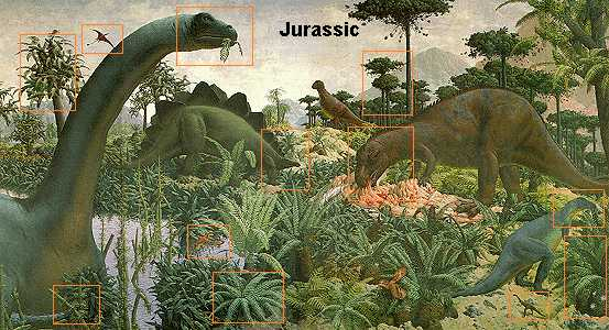 the triassic jurassic A palynological definition of the triassic/jurassic boundary is further complicated by the lack of agreement on the legitimacy of the rhaetian stage, the location of the type section of the basal zone of the hettangian stage, and the uncertainty over the precise definition of the top triassic/basal jurassic within the stratotype sections proposed.