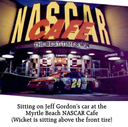 A Cafe and Jeff Gordon's No. 24